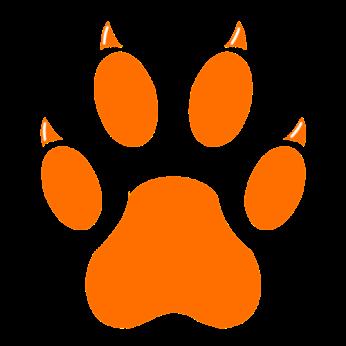 orangeTeam_icon